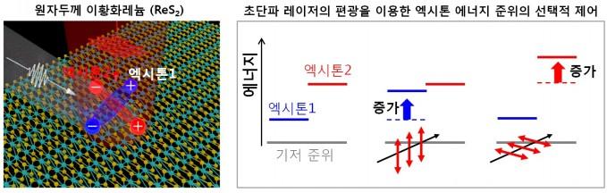 연구진의 개발 원리. 원자두께의 이황화레늄 반도체에 존재하는 서로 다른 2개의 엑시톤(사진 왼쪽)에 레이저 빛을 가하면, 레이저의 편광과 일치하는 엑시톤만 선택적으로 에너지 준위를 달리한다. - 연세대 제공